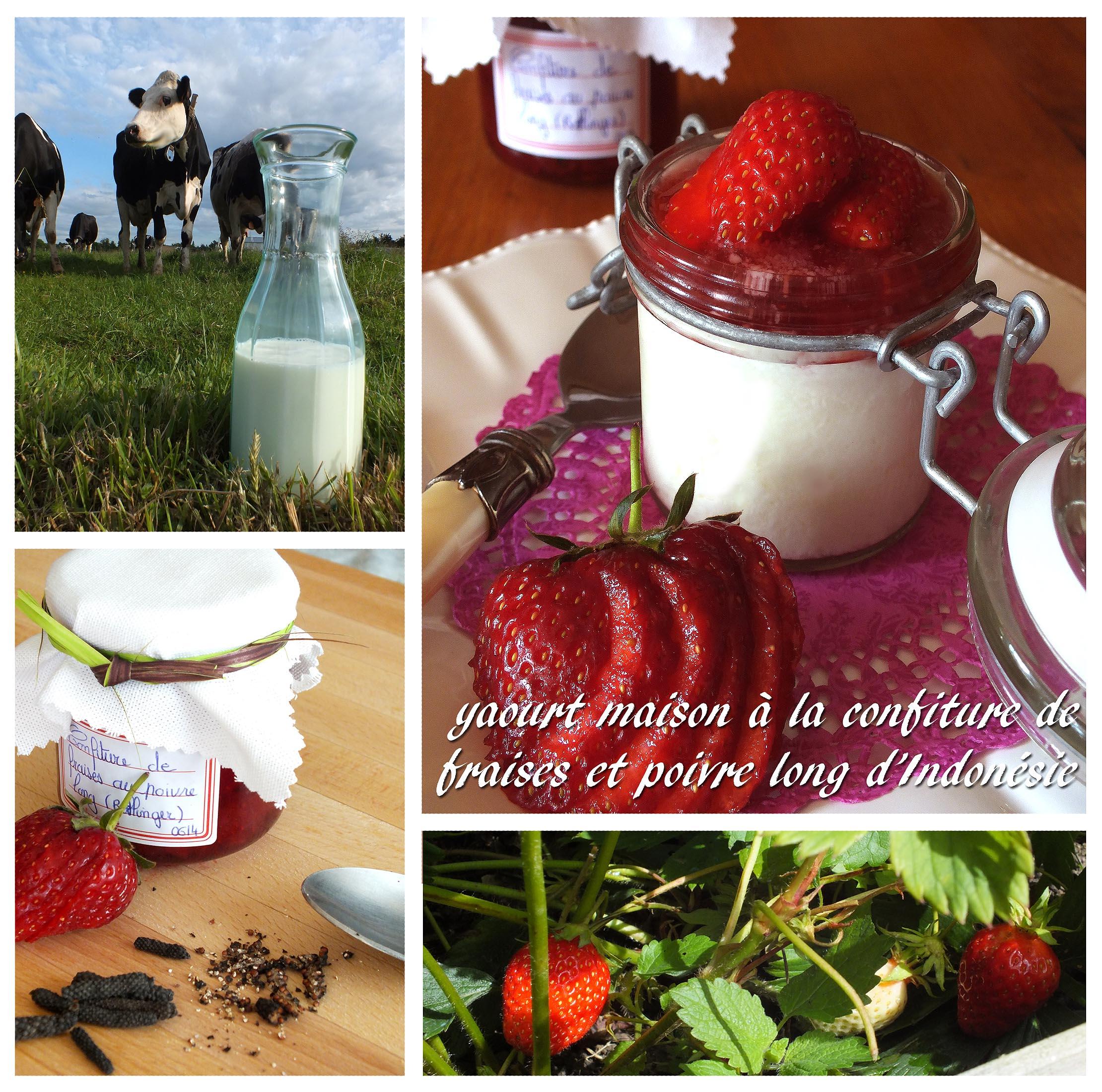 Yaourt maison la confiture de fraises poivre long d - Confiture de fraise maison ...
